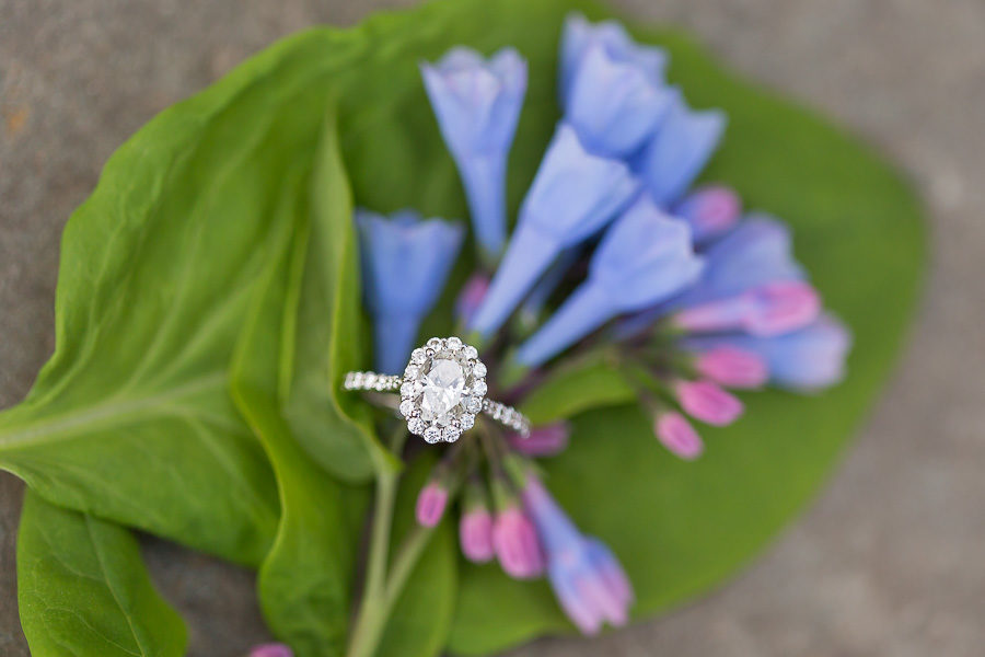 macro of engagement ring over purple flowers